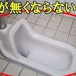 和式トイレが無くならない理由…和式トイレにも多くの利点があった…