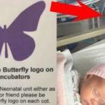 新生児のベッドに飾られた紫色の蝶々のステッカーの意味…日本の病院でも導入して欲しいと話題に…