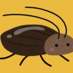 とあるものをお茶パックに入れて部屋に置いたら…4年近く家でゴキブリを見なくなった…