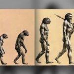 人は猿からの進化ではない理由…人類進化の真理「進化論」は嘘だった?