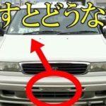 車のフロントナンバープレートは外して良いのか?あまり知られていない車の雑学が話題に…