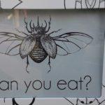 熊本にある昆虫食自動販売機…どんな昆虫がどんな状態で出てくるか分からないと話題に…