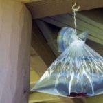 軒下に少し細工を加えた袋をぶら下げるだけでコバエが…殺虫剤いらずだと話題に…