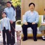 皇族で飼われているワンチャン…令和では保護犬・保護猫を迎えるのが普及して欲しいと話題に…