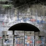 日本の法治が及ばない犬鳴村の伝説…衝撃の真相が話題に…