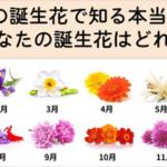 あなたは誕生花を知っていますか?自分の真実を知る事が出来ると話題に…