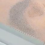 16歳の少女がペットのモルモットを電子レンジで「今から料理しま〜す」…動画をSNSに投稿して大炎上…