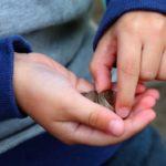 ある親子間で結ばれた「お小遣いに関する契約書」マネしたくなると話題に…
